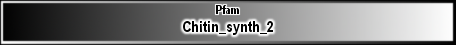 Chitin_synth_2