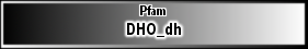 DHO_dh