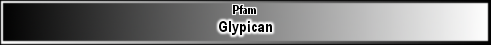 Glypican