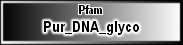 Pur_DNA_glyco