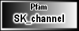 SK_channel