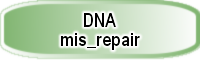 DNA_mis_repair